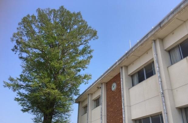 第一小学校校舎