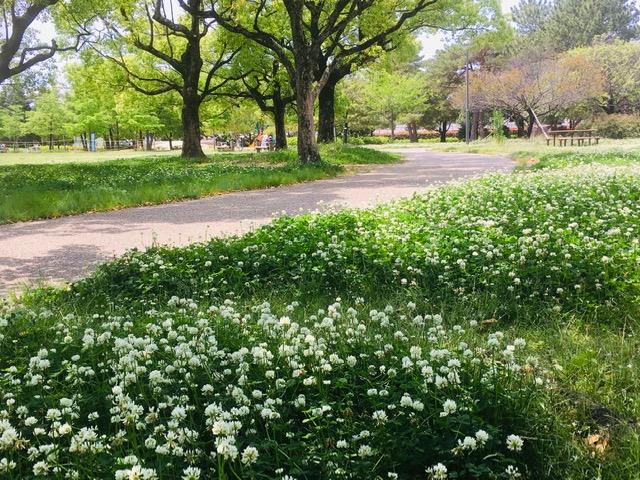 鈴の森公園クローバー散歩道