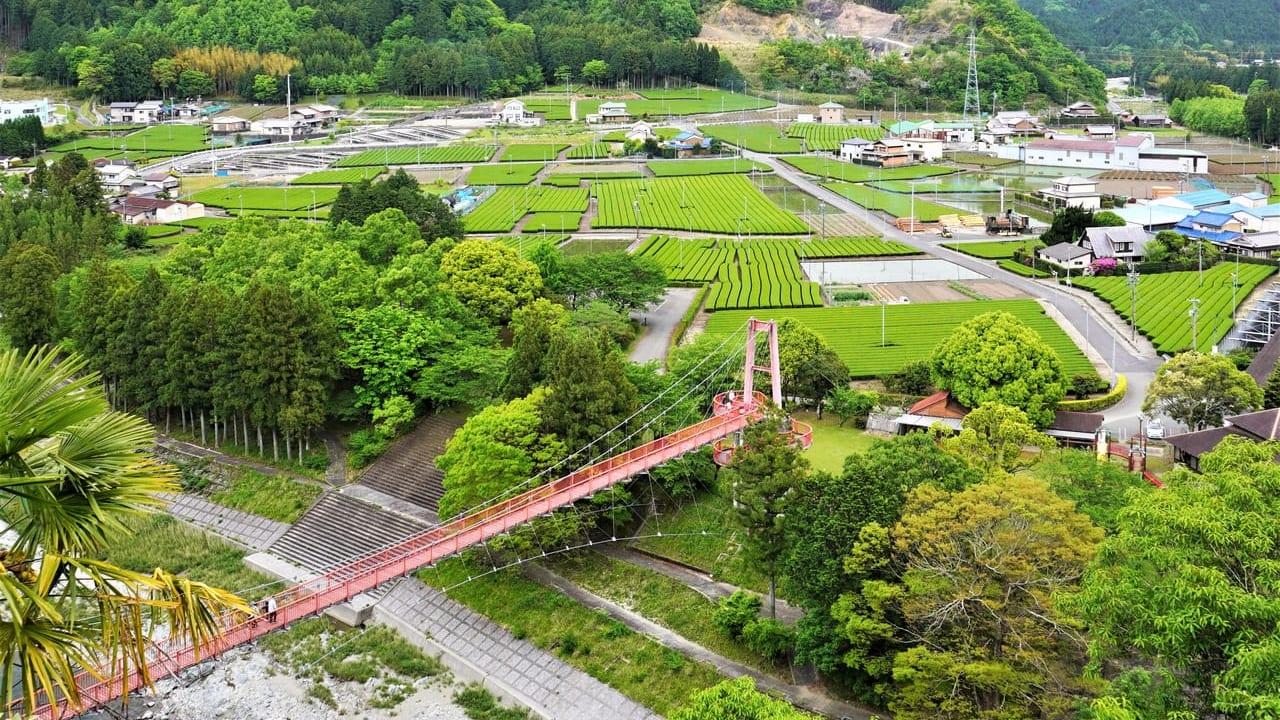 櫛田川と茶畑赤い橋