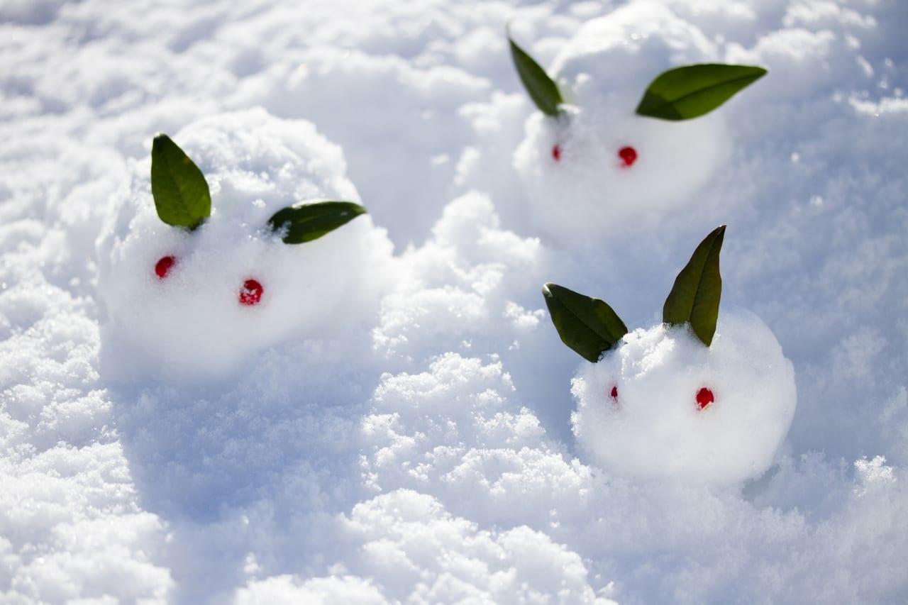 雪のうえの3匹の雪ウサギAC